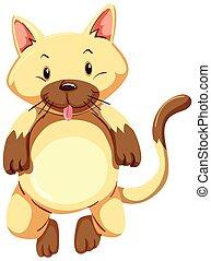 mignon, chaton, fourrure, brun