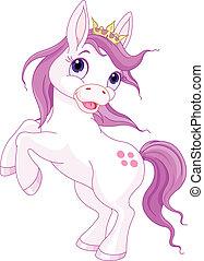 mignon, cheval, haut, élevage, princesse