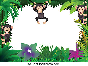mignon, chimpanzé, jungle
