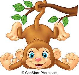 mignon, dessin animé, arbre, singe, pendre