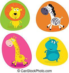 mignon, ensemble, animaux, -, safari, lion...
