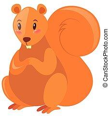 mignon, fourrure, écureuil, brun