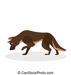 mignon, fourrure, brun, rigolote, caractère, chien, chiot, standing.