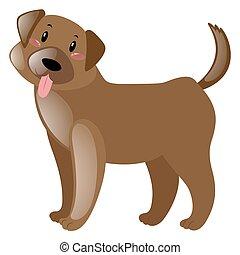 mignon, fourrure, chien, brun