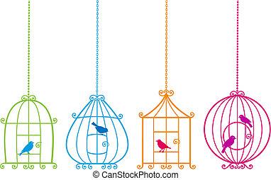 mignon, oiseaux, agréable, cages oiseaux, v