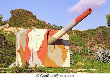 militaire, canon