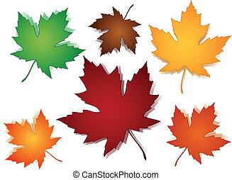 modèle, feuilles, seamless, érable, automne