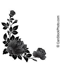 modèle, fleur, angulaire, rose
