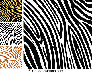 modèle fond, -, zebra, copie peau animale