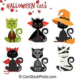 mode, halloween, chat, noir, déguisement, equipements