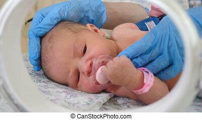 moderne, vidéo, clinic., endroit, réanimation, enfant, jeûne, close-up., maternité, femme, tétines, 4k, bas, bébé, calme, pleurer, mains, docteur, nouveau né, donner, fréquent, respiration