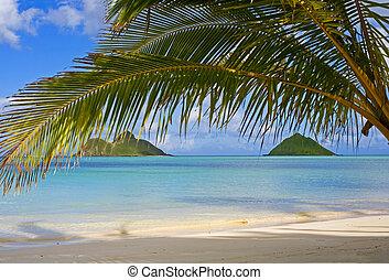 mokulua, fermé, plage, lanikai, oahu, îles