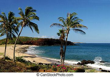 molokai, littoral