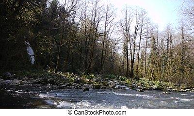 montagne, 2, rivière, chute eau, gorge