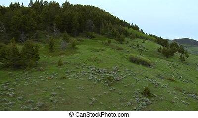 montagne, aérien, luxuriant, vert, coup, vallée