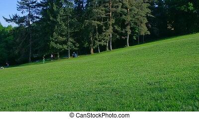 montagne blanche occidentale terrier, marche