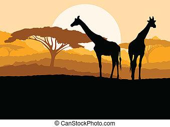 montagne, girafe, famille, nature, afrique, illustration, silhouettes, vecteur, fond, sauvage, paysage