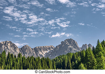 montagne, idyllique, forêt verte, paysage