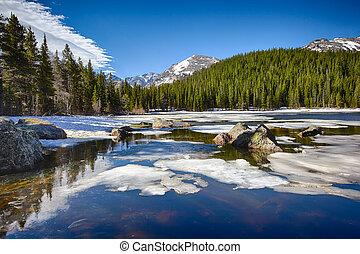 montagne, rocheux, parc national, lac, ours