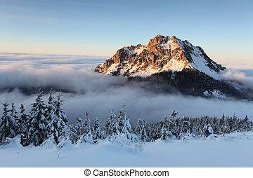 montagne, slovaquie, paysage hiver