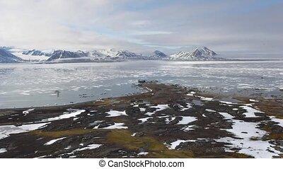 montagnes, arctique, -, ford, environnement, toundra