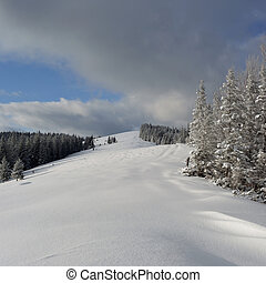 montagnes, carpathians, hiver