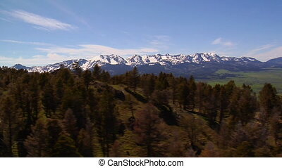 montagnes, coup, herbeux, pins, paradis, montana, aérien, vallée