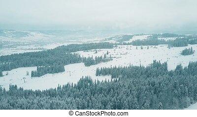 montagnes, coup, méridional, pologne, recours, tatra, aérien, pentes, ski, moule
