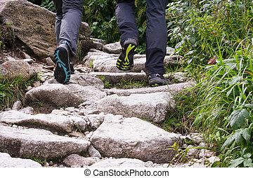 montagnes., montagne, touriste, trail., randonneur, marche