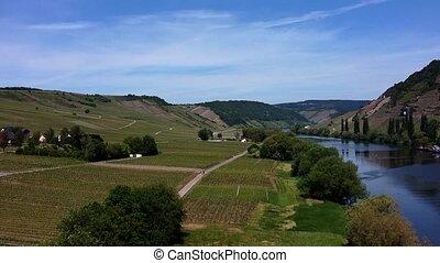 monter, vue, champs, coup, à côté de, rivière, vignoble, aérien, calme