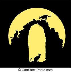 moon., chats, noir