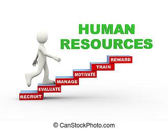 mot, étapes, humain, 3d, ressources, homme