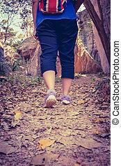 motivation, femme, exercice, marche, dos, outdoors., vue, santé, concept, forêt