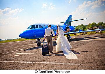 mouche, couple, lune miel, mariage