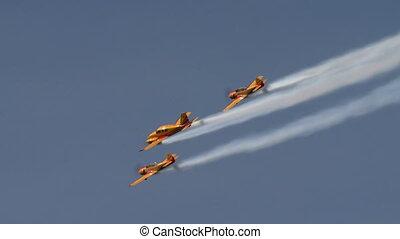 mouche, formation, vue, aerobatics., avions