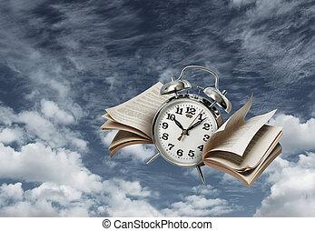 mouches, concept, temps, histoire