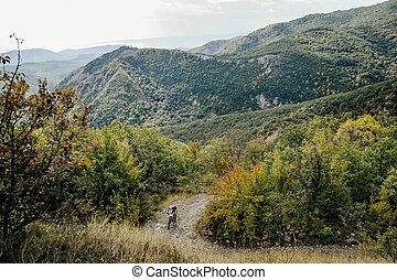 mountainbike, sports, cycliste