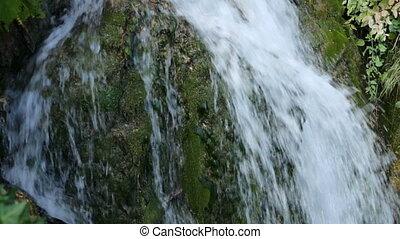 mousse, petit, chute eau