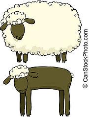 mouton, deux