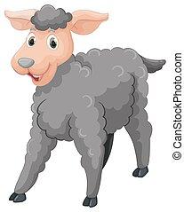 mouton, gris, visage heureux