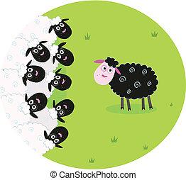 mouton noir, blanc