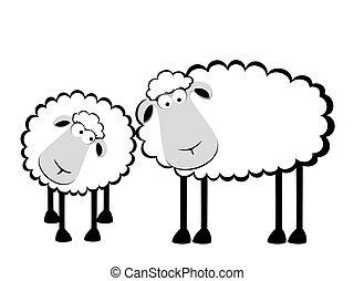 mouton, sourire, deux, dessin animé