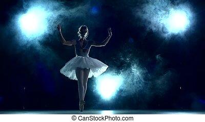 mouvement, ballerine, blue., classe, séance entraînement, lent