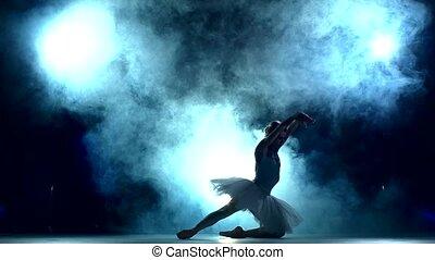 mouvement, ballerine, lent, séance entraînement, bleu