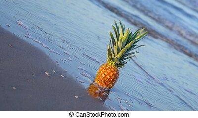 mouvement, couvertures, lent, ananas, mer, sable