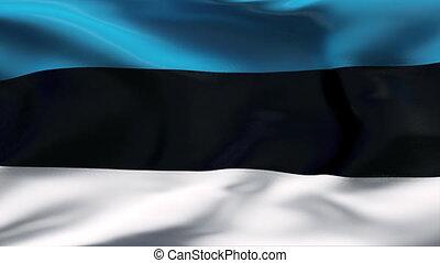 mouvement, drapeau, estonie, lent