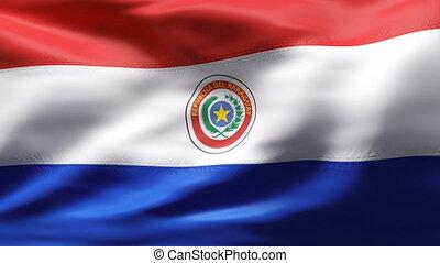 mouvement, drapeau paraguay, lent