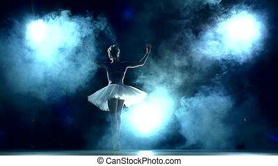 mouvement, gracieux, ballerine, lent, séance entraînement, classe