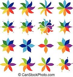 multicolore, ensemble, fleurs
