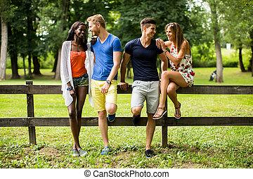 multiracial, amis, parc, jeune